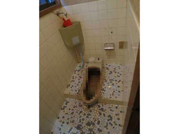 簡易水洗トイレ 費用